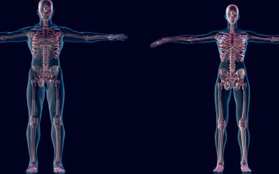 Holistic approach of osteopathy and of tissue memory – part one
